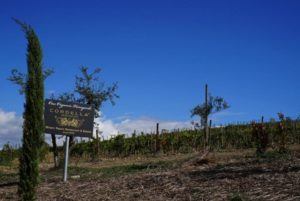 cordella-vineyards-sign