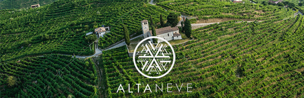 vineyard-logo-crop